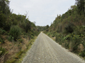 Maori Creek Road and Maori Gully Road