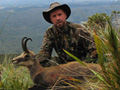 West Coast chamois hunt